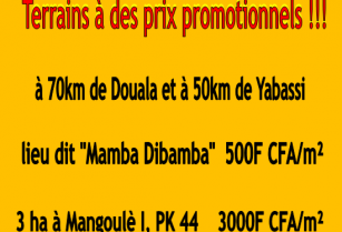 Terrain à vendre à Mamba à 70 KM de douala 500fcfa/m2 par Cameroun immobilier SARL