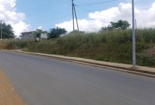 Terrain à vendre à yatika 2 hectares au goudron