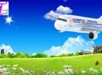 Reservation de billets d'avions