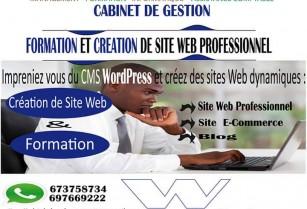 Création et Formation en création de Site Web Professionnel, E-Commerce…