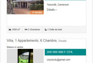 1er site immobilier Camerounais