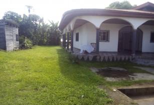 maison meublé  a mboa manga débarcadère