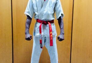 Kyokushin karaté Do