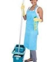 pele recherche pour l'un de ses partenaires habitant Nkolbisson une ménagère.